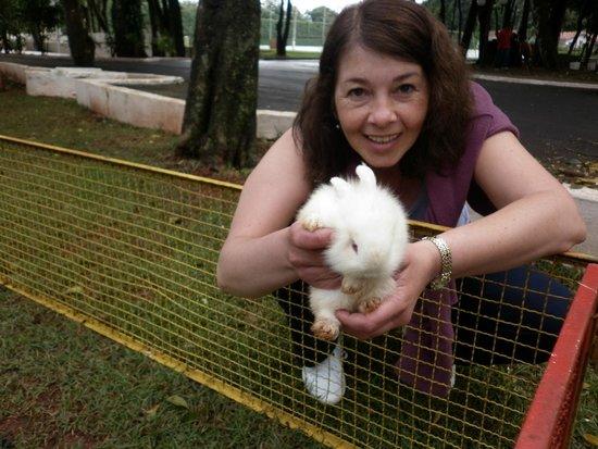 Rafain Palace Hotel & Convention: Animales en el parque