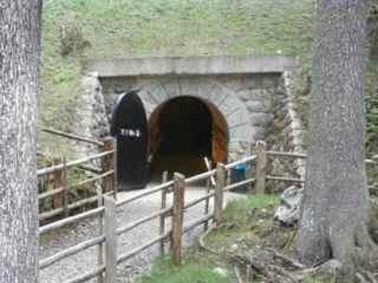 Lago di Carezza: The tunnel from the lakeside