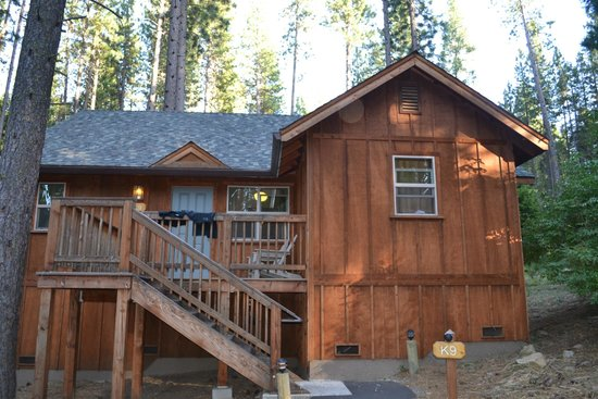 Cabin c2 refrigerator picture of evergreen lodge at for Groveland ca cabin rentals