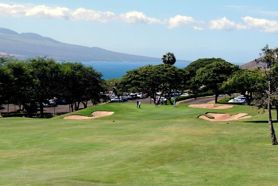 Kahili Golf Course: downhill view
