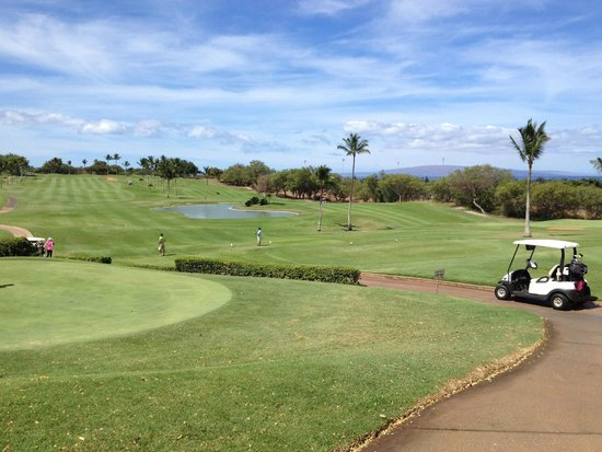 Kahili Golf Course: more views