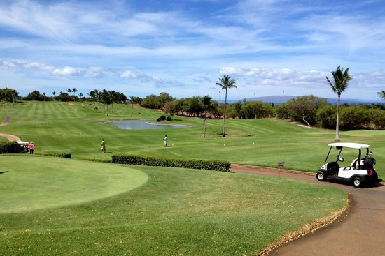 Kahili Golf Course: wide open views
