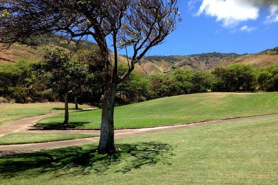 Kahili Golf Course: views up the mountain