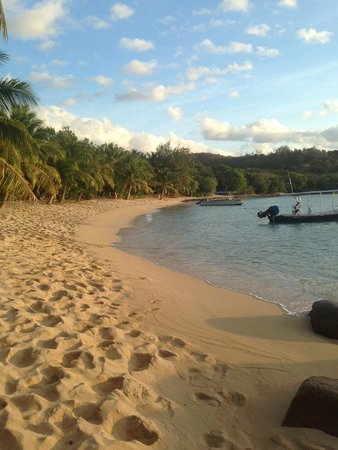 Barefoot Manta Island: Sunset Beach