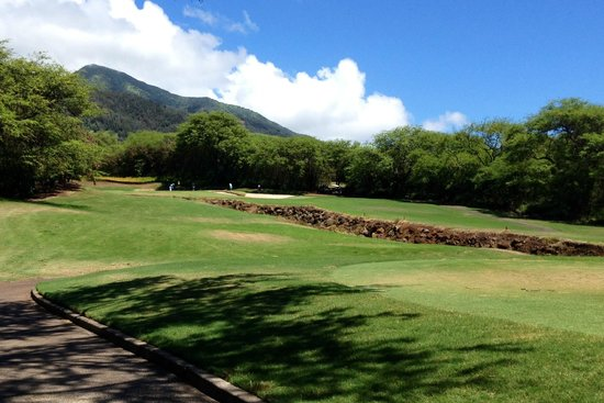 Kahili Golf Course: just in great shape!