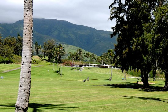 Waiehu Golf Course: coming up to clubhouse