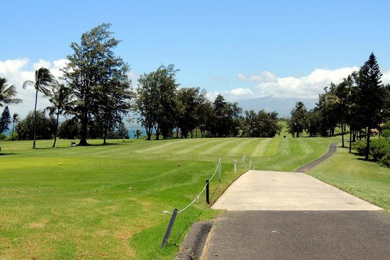 Waiehu Golf Course: back nine view