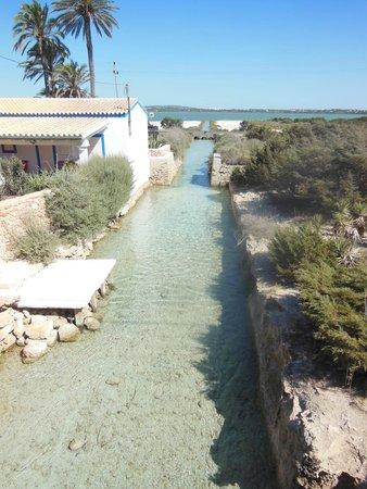 Hostal La Savina: Canal