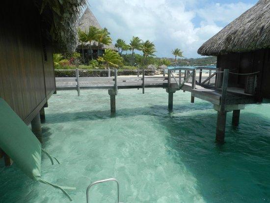 Sofitel Bora Bora Marara Beach Resort: vue de la chambre