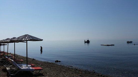 Assos Sardunya Butik Hotel: Plaj ve Oda Manzarası