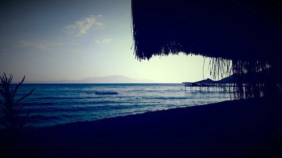 Assos Sardunya Butik Hotel: Bahçe Manzarası