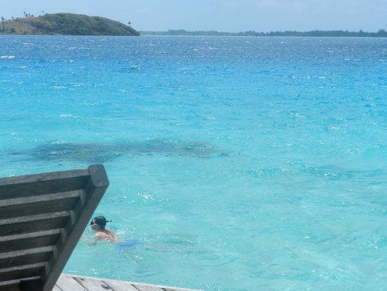 Sofitel Bora Bora Marara Beach Resort : vue de la chambre