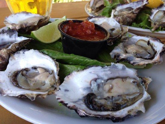 Fanny Bay Inn: Fanny Bay Oysters
