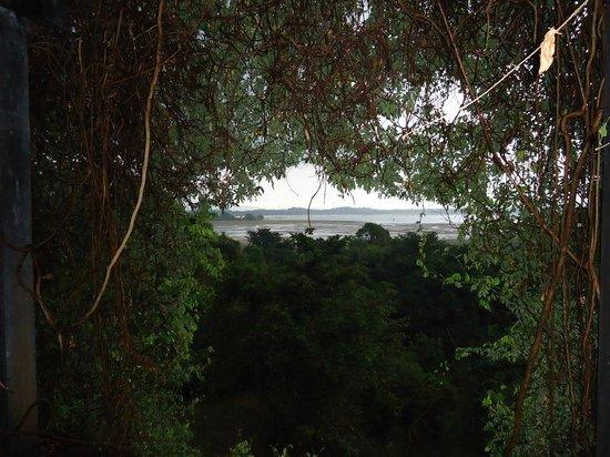 Heritance Kandalama: View from the room, Kandala wewa/tank