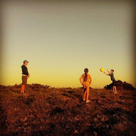 Byron Bay Farmstay: Sunset summit