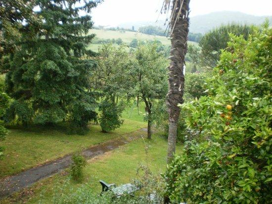 La Casona de Priorio: Vista del jardin