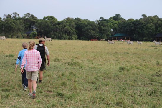 Elephant Pepper Camp : Walk back to camp with patrick