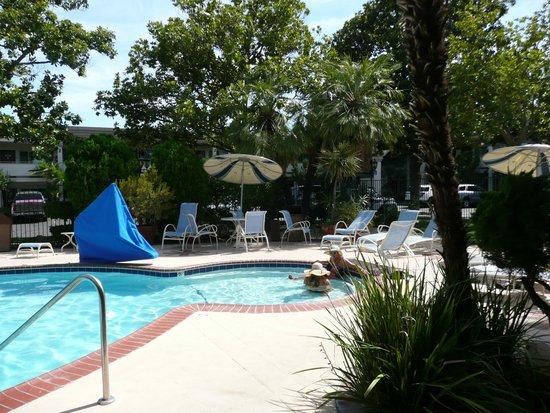Best Western Plus Black Oak: pool. Landscaping