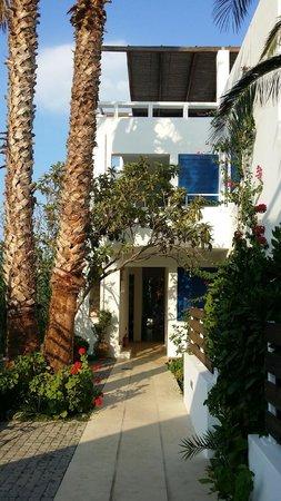 Anna Plakias Apartments: the apartments