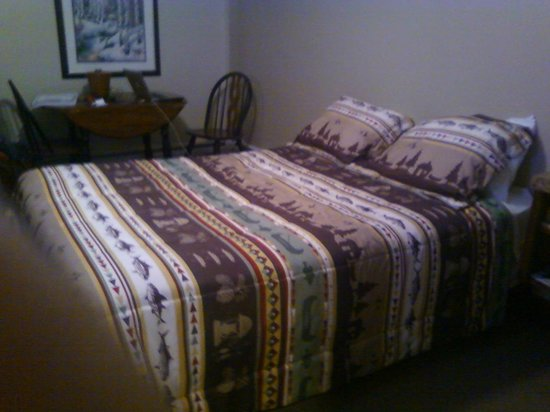 Evergreen Inn: queen size bed