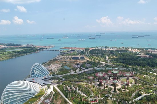 Marina Bay Sands : roof top view