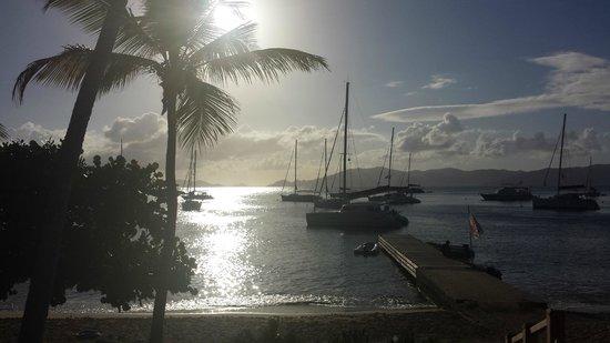 Cooper Island Beach Club Restaurant: Boats