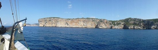 The Andrea Jensen Boat Trip: Andrea Jensen