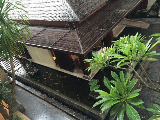 Best Western Resort Kuta: Gold fish pond behind reception view from my room 2123