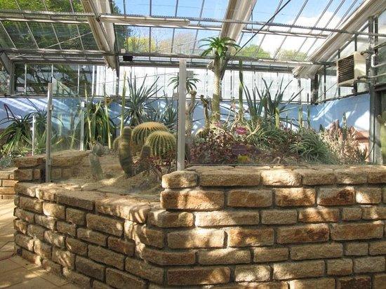 Jardin du Conservatoire Botanique National de Brest : Serres