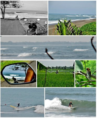 Stormrider Surfcamp Bali: Some area around to discover...