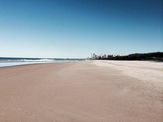 Sea World Resort: Walk right across the road to this beautiful beach!