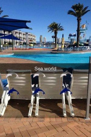 Sea World Resort: Overlooking the pool area.