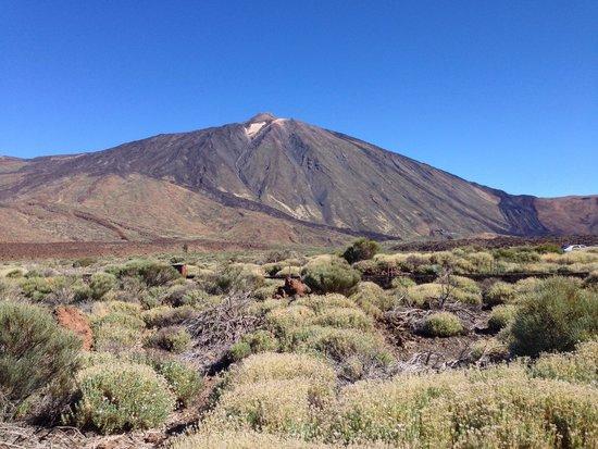 Volcan El Teide: Вид на вулкан