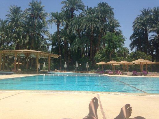 Sofitel Winter Palace Luxor: Amazing!!