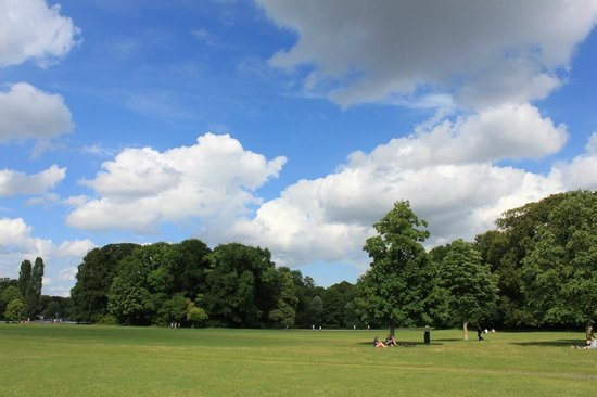 Jardín inglés: Yeşil ve mavi