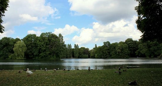 Jardín inglés: Göl manzarası