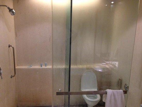 ITC Sonar: Bath area