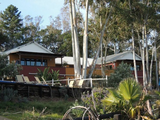 Ibis Place Country House & Cottages: The Guesthouse