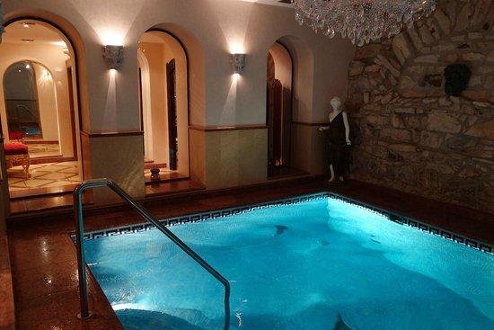 Alchymist Grand Hotel & Spa: Piscine