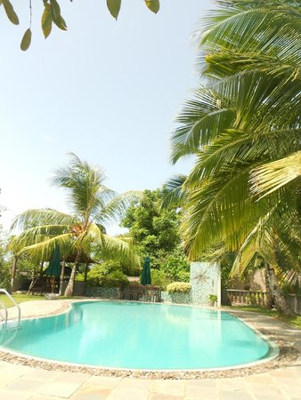 Asian Jewel Boutique Hotel: lovely coconut trees