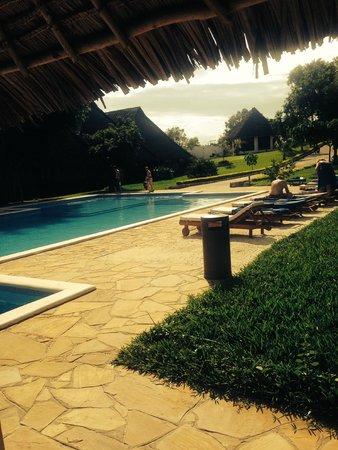 Karafuu Beach Resort and Spa : Pool area