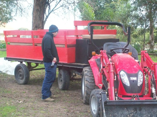 Rivergum Holiday Retreat: Tractor Ride