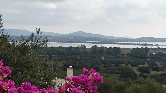 Villa Flores : vista dalla terrazza