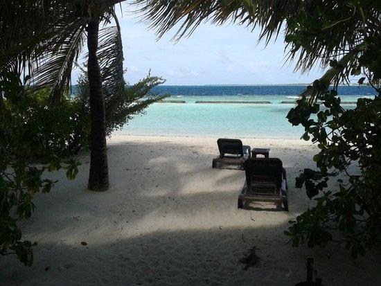 Komandoo Maldives Island Resort : View from Coral 5!