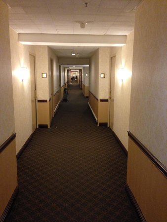 New York Hilton Midtown: Dingy hallway