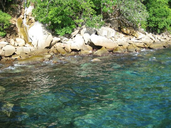 Vallarta Adventures - Las Caletas Beach Hideaway : Clear water at 89 degrees... like bath water