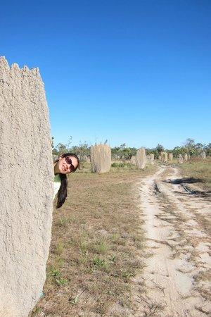 "Northern Territory Indigenous Day Tours: A termite ""cathedral"""