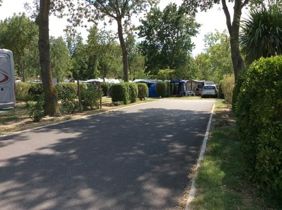 Camping les marsouins picture of camping les marsouins for Campings argeles sur mer avec piscine