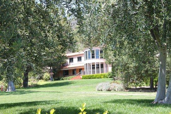 The Getty Villa : Getty's home