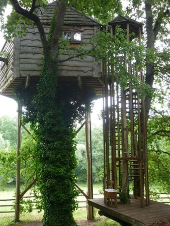 Chateau Gauthie: Treehouse from the entry side
